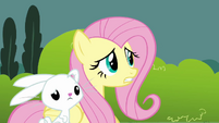 Fluttershy &#39;Who&#39;s&#39; S3E3
