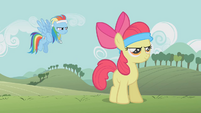 "Rainbow Dash ""Are you ready?"" S1E12"