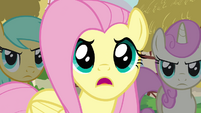 Fluttershy &quot;And they trashed our critter picnic!&quot; S3E3