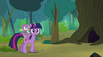 Twilight with Spike walking in the woodland S3E03