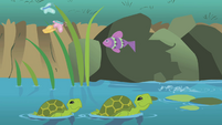 Turtles swimming in a stream S1E11