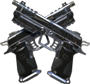 Dual Wield menu icon BOII