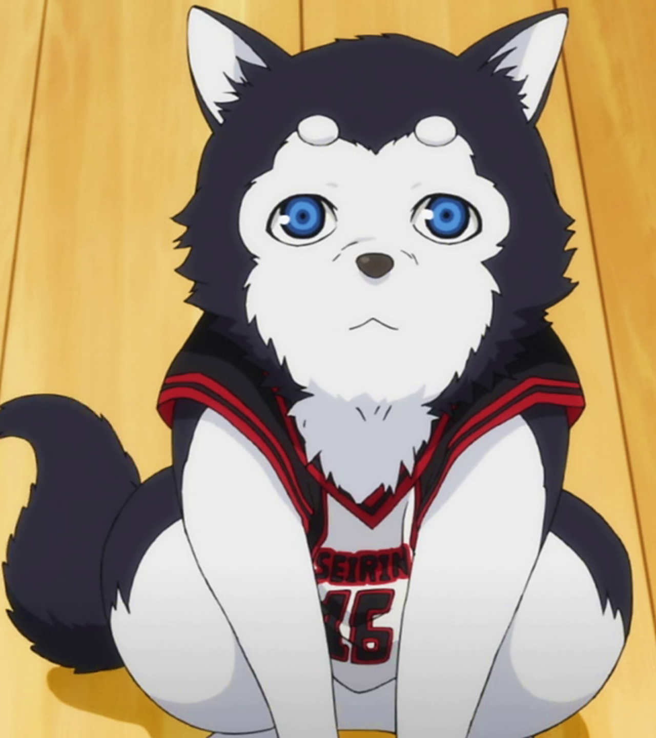 http://images3.wikia.nocookie.net/__cb20121123204603/kurokonobasuke/images/7/72/Tetsuya_-2_with_Jersey_(Ep.10_SC).png