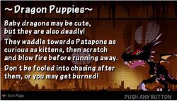 Dragon Puppies