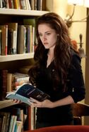 BD2Bella1600x880