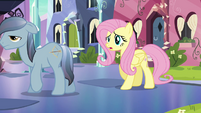 Fluttershy &#39;I was just wondering&#39; S3E1