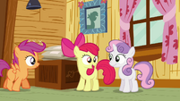 Apple Bloom &#39;of course you can go!&#39; S3E06