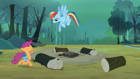 Scootaloo approaching Rainbow S3E6