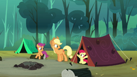 Applejack's and Apple Bloom's tent is set up S3E06