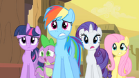 Twilight, Rainbow Dash, Rarity, Fluttershy, Spike Worried S1E21