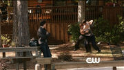 Tvd 4x10-5
