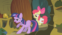 Twilight 'Zecora is an evil enchantress' S01E09