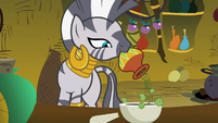 Zecora Adding Ingredient S2E6