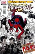 Amazing Spider-Man Vol 1 564