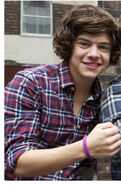 Harry-Wristband
