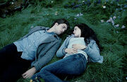 Edward bella in the woods
