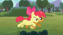Apple Bloom and Babs seven-legged race S03E08