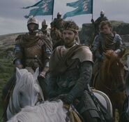 Renly&#39;s Kingsguard with Brienne Loras and heraldry