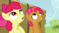 Babs and Apple Bloom looking up S3E08