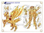 Pegasus Cloth V-06