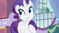 Rarity organize S3E9