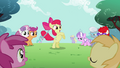 Apple Bloom has the hoop in her tail S2E06.png