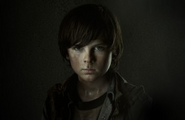 Carl Grimes (TV Series)