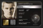 Cato dip
