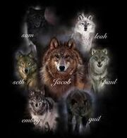 Werewolfs