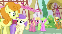 Confused background ponies &quot;toupee?&quot; S02E18