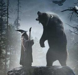 The-hobbit-gandalf-and-Beorn