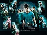 Potter 2