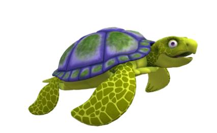 Bonaire's Sea Turtles