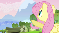 Fluttershy &quot;there&#39;s a big mess&quot; S03E10