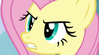Fluttershy enraged S03E10