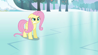 Fluttershy snaps &quot;not! your! friend!&quot; S03E10