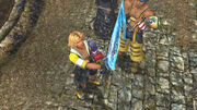 Tidus receiving Brotherhood