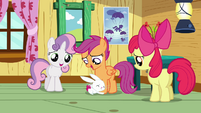 Angel hugging Scootaloo&#39;s legs S3E11