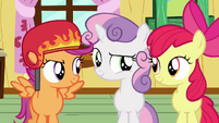 Cutie Mark Crusaders confident S03E11