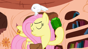 Fluttershy holding a gem S3E11 (Promo)