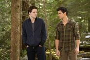 Edward y jacob