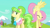 Fluttershy struggles with Peachbottom&#39;s luggage S03E12