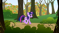 Twilight strolling S01E13