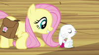 Fluttershy &quot;Three times&quot; S03E11