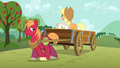 Applejack and Big Mac planting seeds S03E13.png
