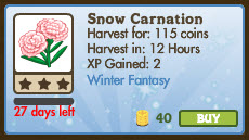 Snow Carnation Market Info