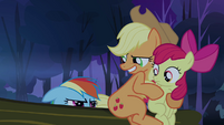 Applejack 'So where is it's brain?' S3E6