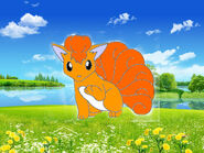 Vulpix in the felds
