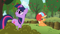 Applejack 'I'd take cover if I were you' S2E3