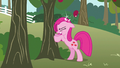 Pinkie Pie hit by apple S3E13.png